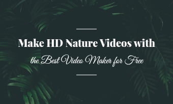 nature video