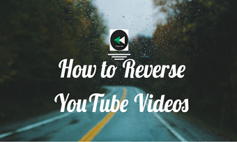 reverse youtube video