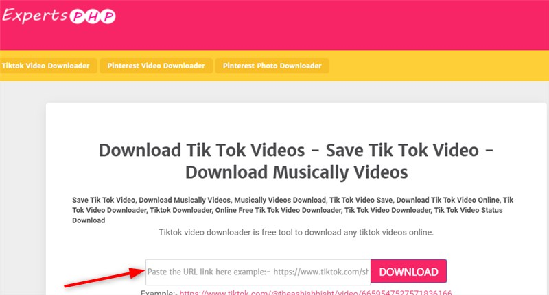 How to Download TikTok Videos Online