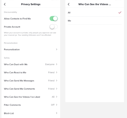 How to Use TikTok - Privacy Settings