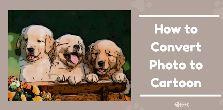 5 Best Tools To Turn Photo Into Cartoon Online Easily