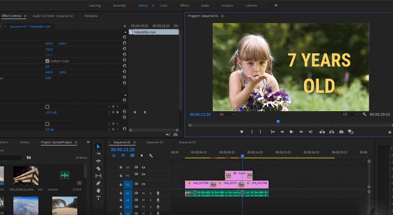 Adobe Premiere Pro - Ultra 4k video cutter & video enhancer.