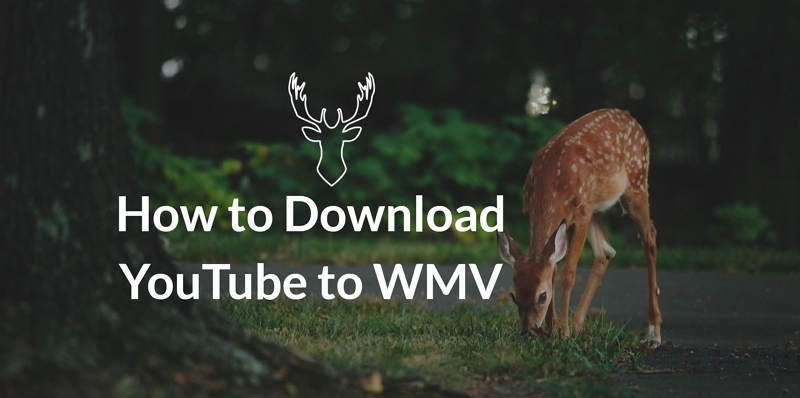 How to Download YouTube to WMV Online